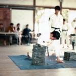 AJKF Tai Kai Hirado Jun 73, Yamamoto Elbow Tameshiwari
