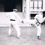 Caldwell, Fujisawa - San Bon Kumite B Practice Jul 1973